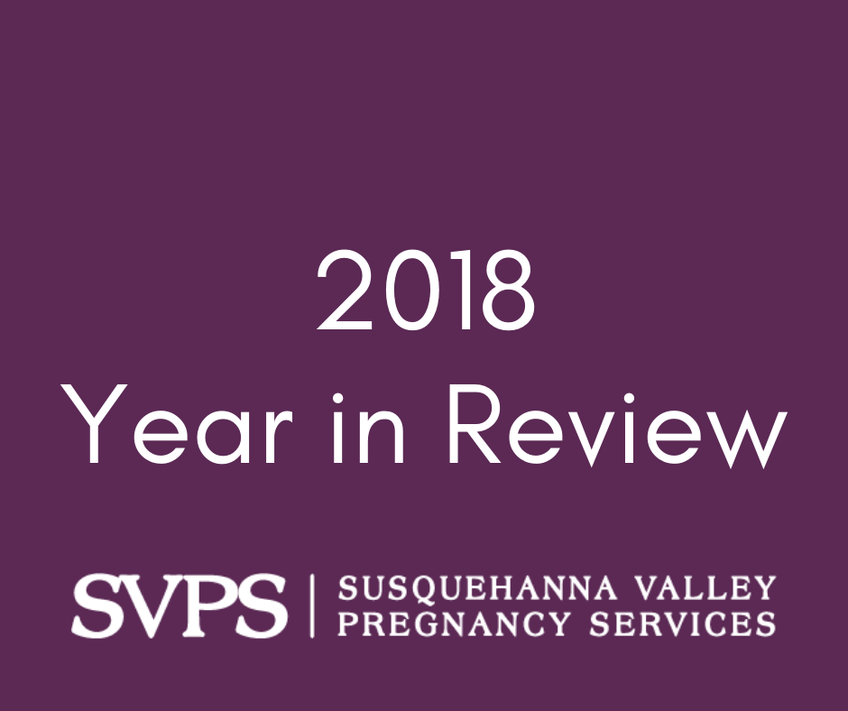 2018 SVPS Pregnancy Services in Review