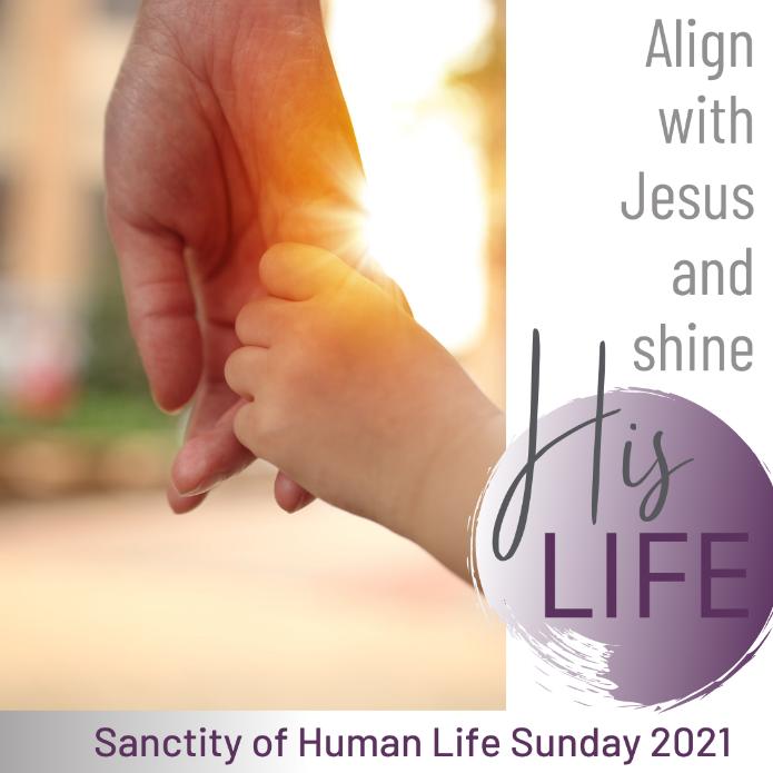 To Help You Celebrate the Sacredness of Human Life